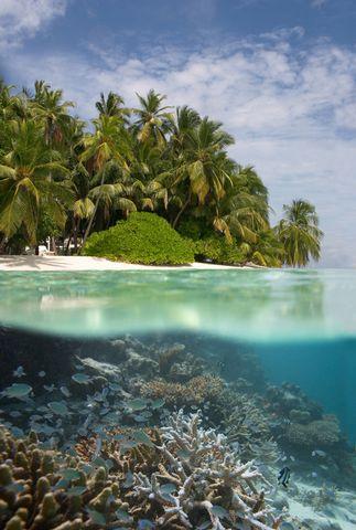 over underwater