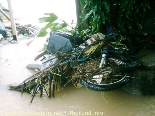 Sintflut-artige Überschwemmung & Hochwasser in Thailand - Suratthani - Koh Samui!